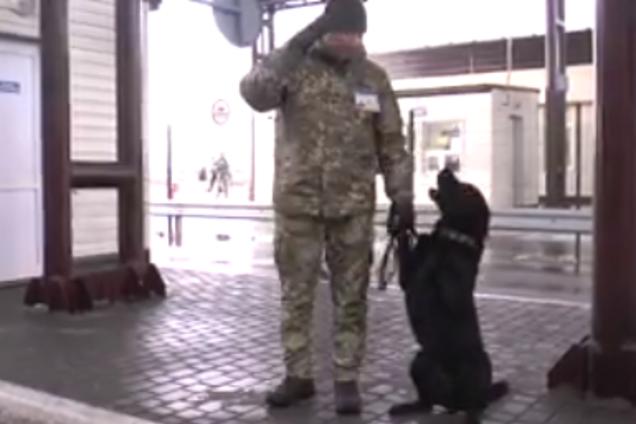 Українські прикордонники показали пса-патріота