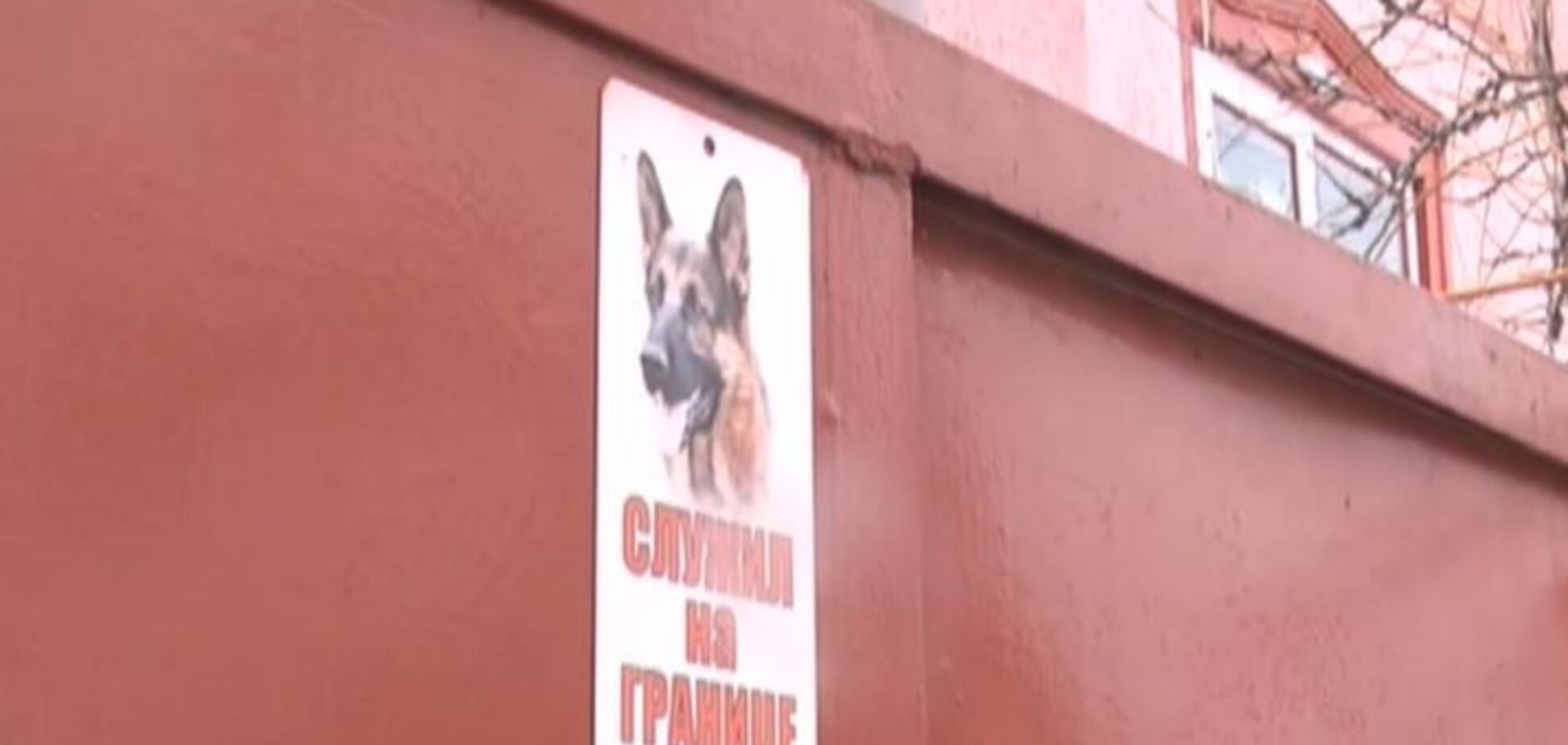 Весь двор в крови: появились жуткие подробности убийства собакой ребенка под Харьковом