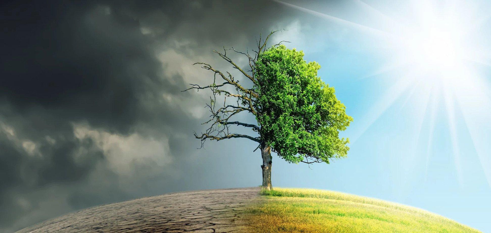 Целые страны станут пустыней: озвучен жуткий прогноз изменений климата