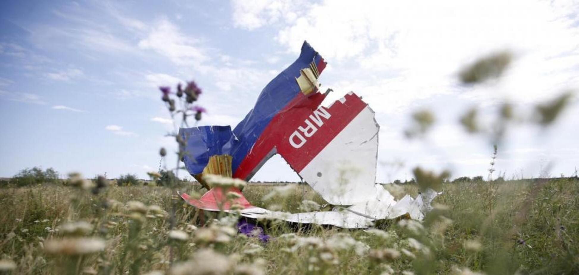 Місце падіння МН17, збитого над Донбасом