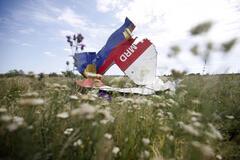 Место падения МН17, сбитого над Донбассом
