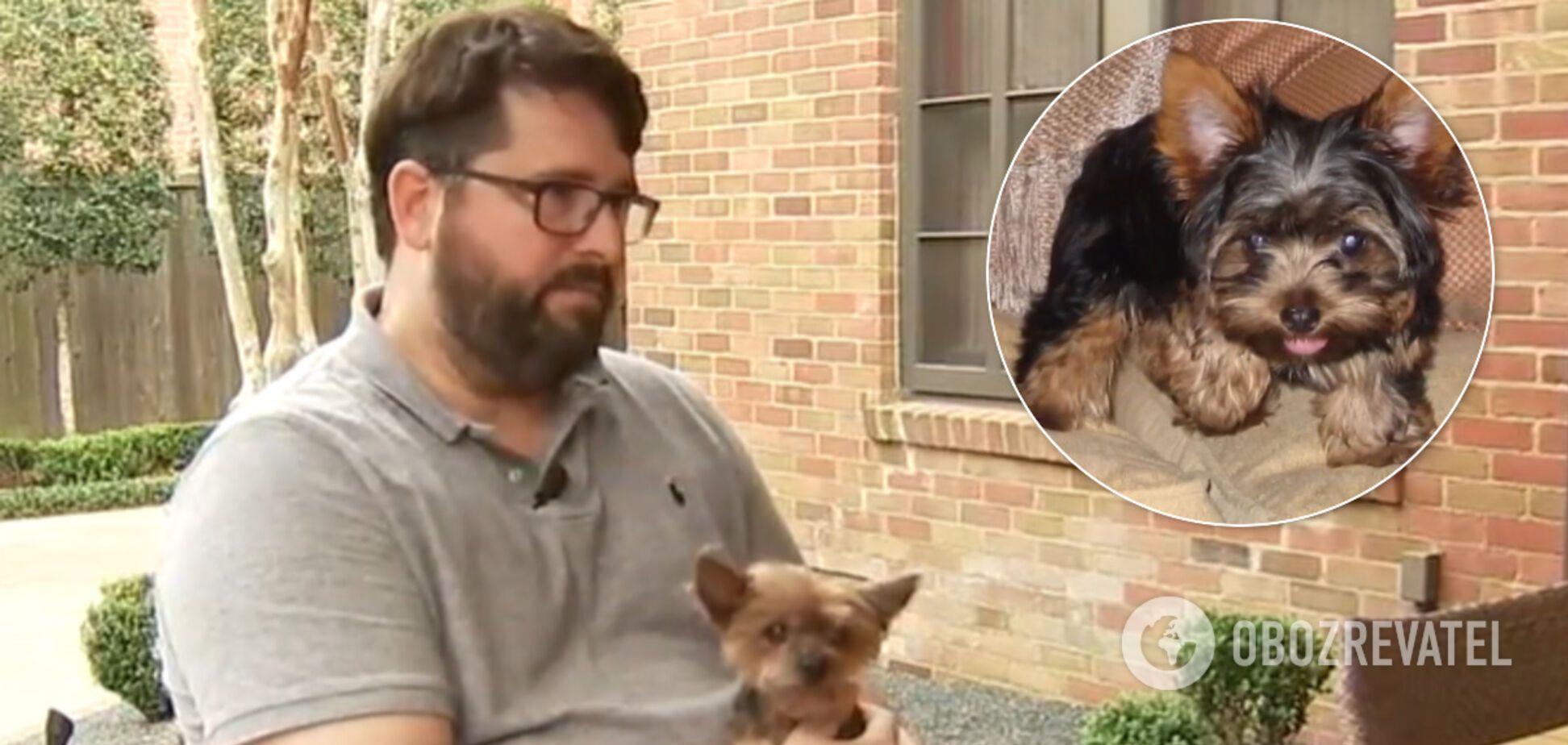 Пропавший пес вернулся домой спустя 14 лет: встреча с хозяином растрогала сеть