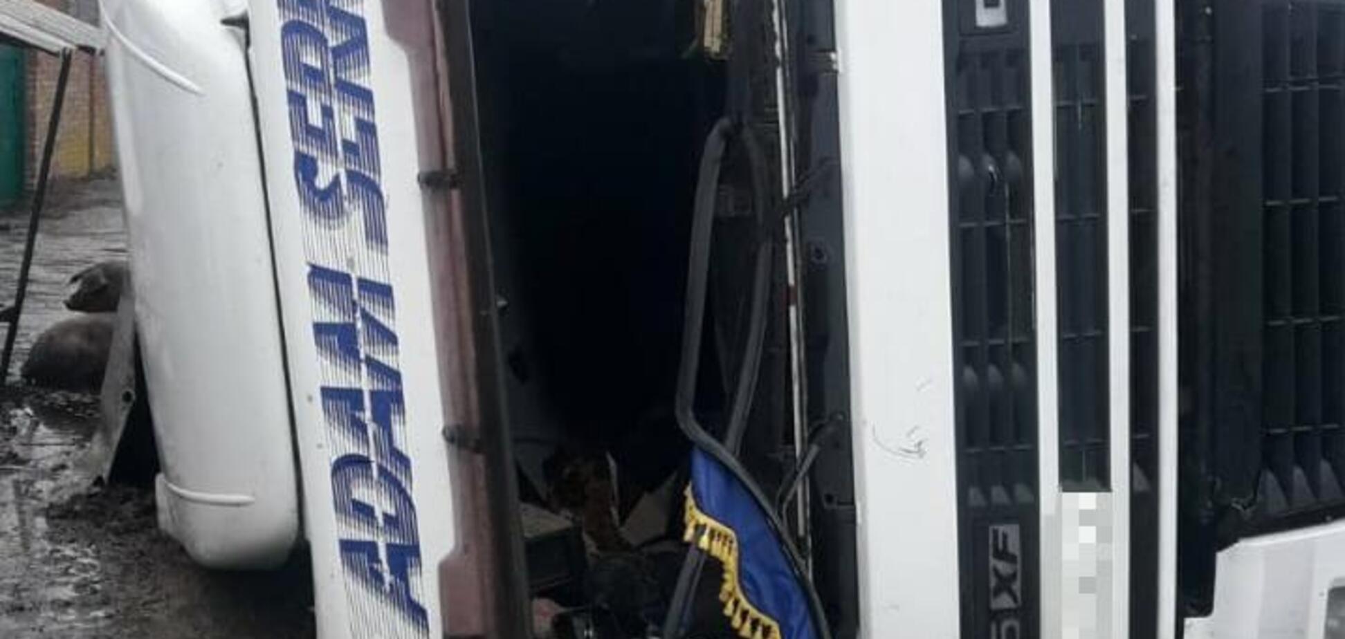 На Харьковщине перевернулась фура со свиньями: 'пассажиры' разбежались. Видео масштабного ДТП