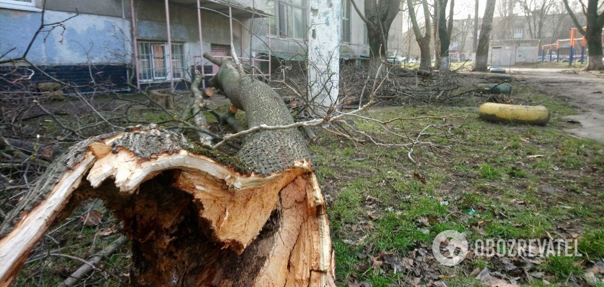 Ураган залишив без світла 145 сіл і міст Одеської області