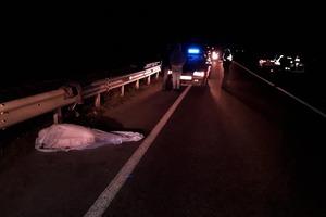 Выскочили из темноты: за один вечер в Черкассах произошло две страшные аварии. Фото