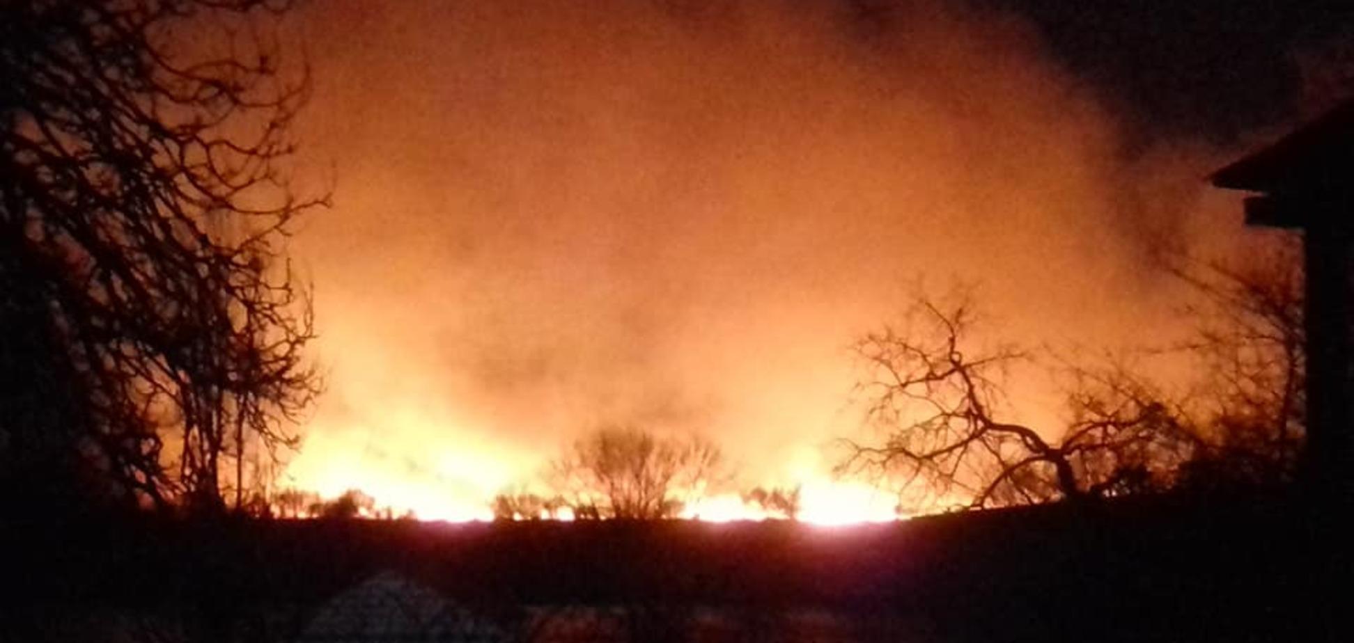 Под Одессой вспыхнул страшный пожар в заповеднике. Фото и видео с места ЧП