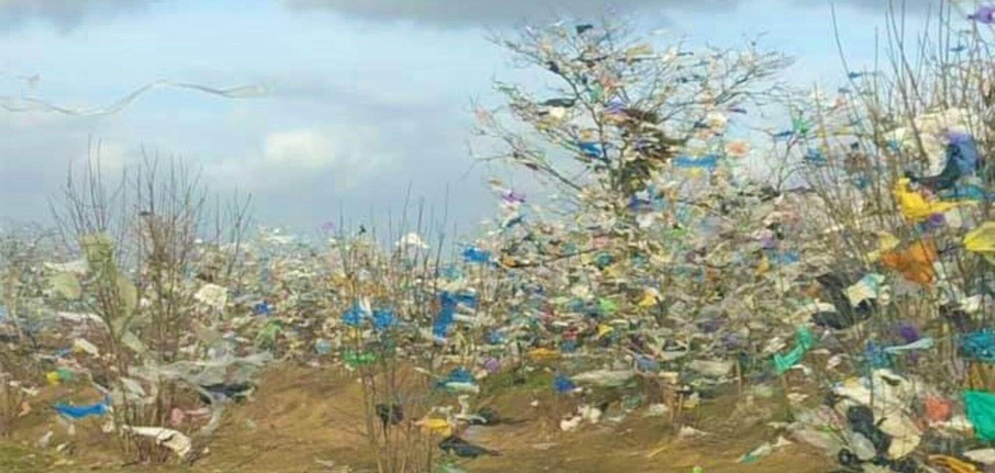 Ураган розніс по окрузі мільйони пакетів з сміттєзвалища