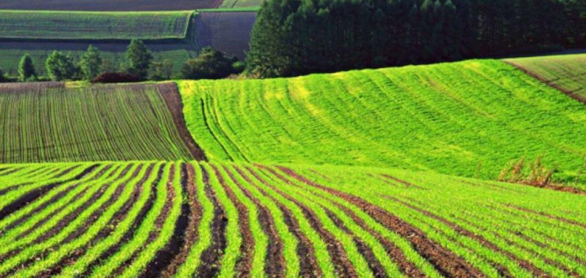 Закон про землю потрібен Зеленському, щоб швидко розпродати 8 млн га державної землі