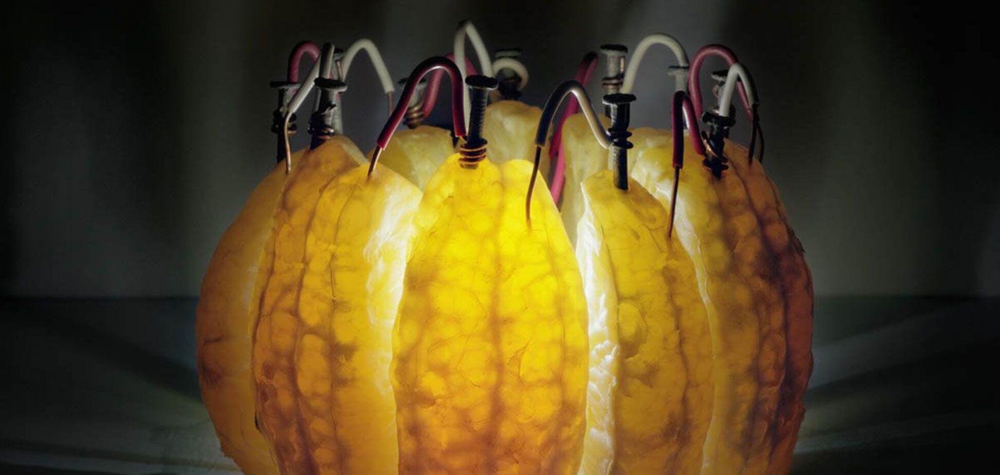 В Испании начали добывать 'зеленую' энергию из апельсинов