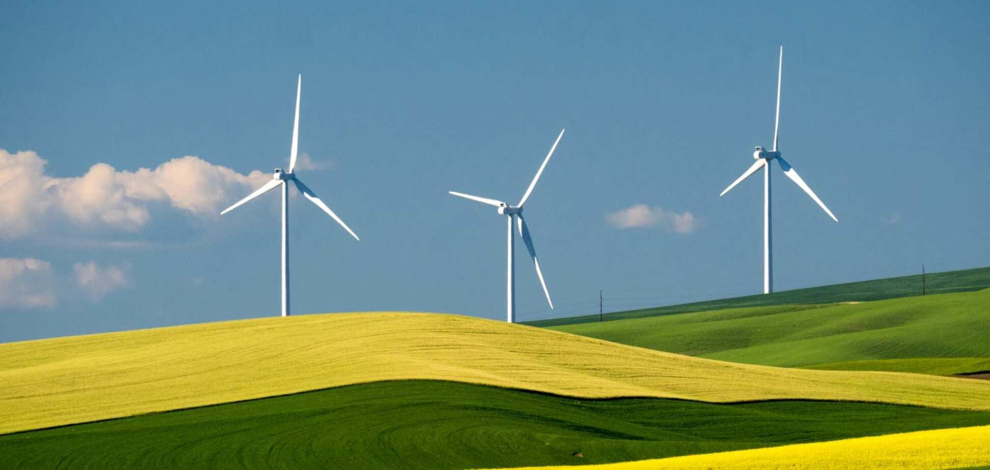 Уряд України звинуватили в ігноруванні кризи на ринку 'зеленої' енергетики