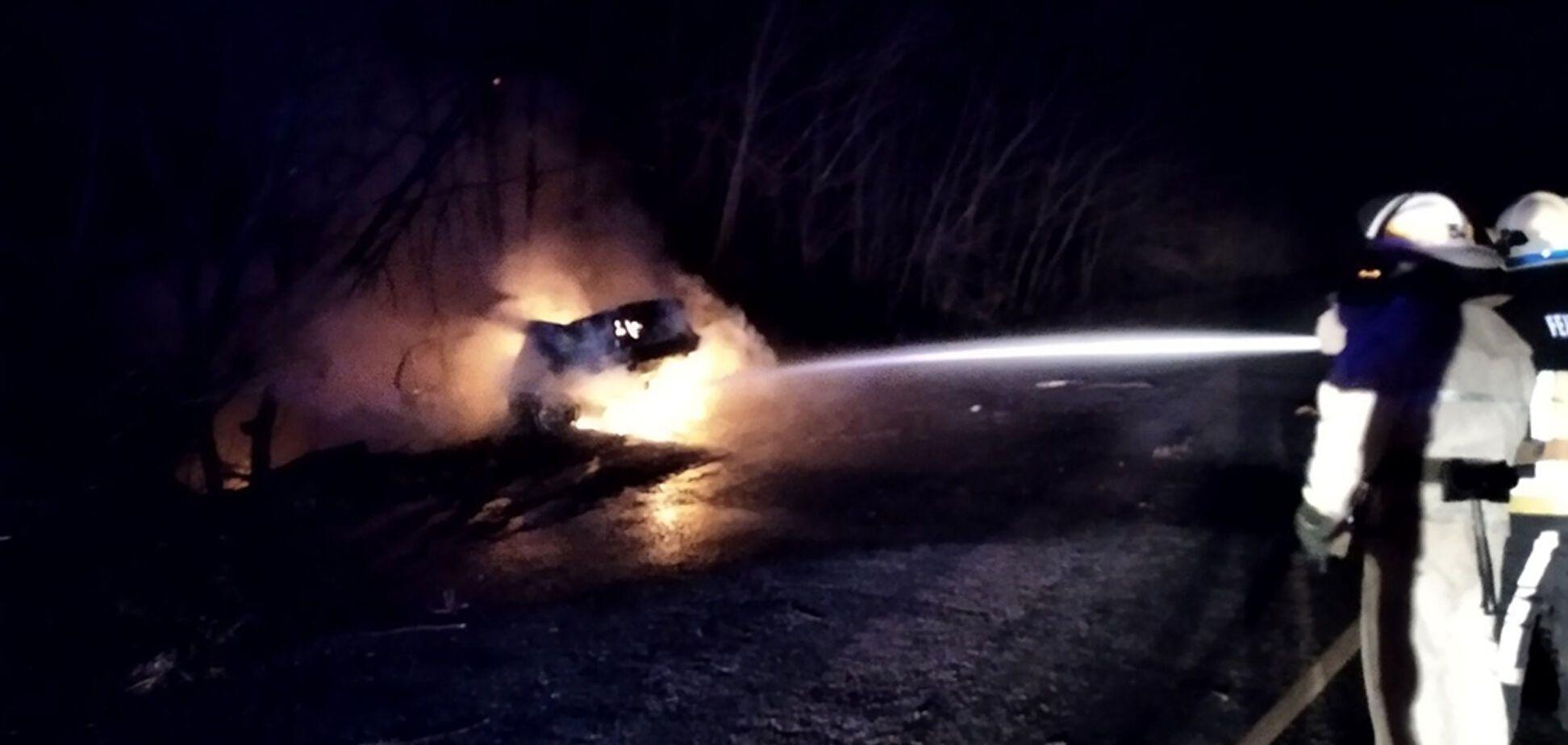 На Дніпропетровщині автомобіль BMW злетів у кювет і загорівся. фото