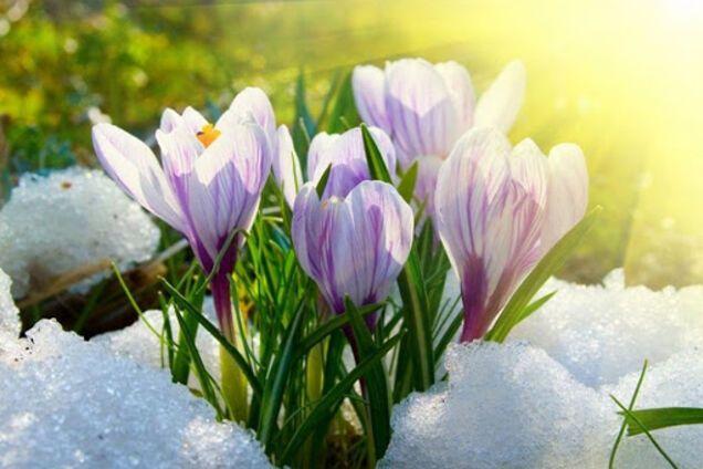 Погода в марте 2020 в Украине