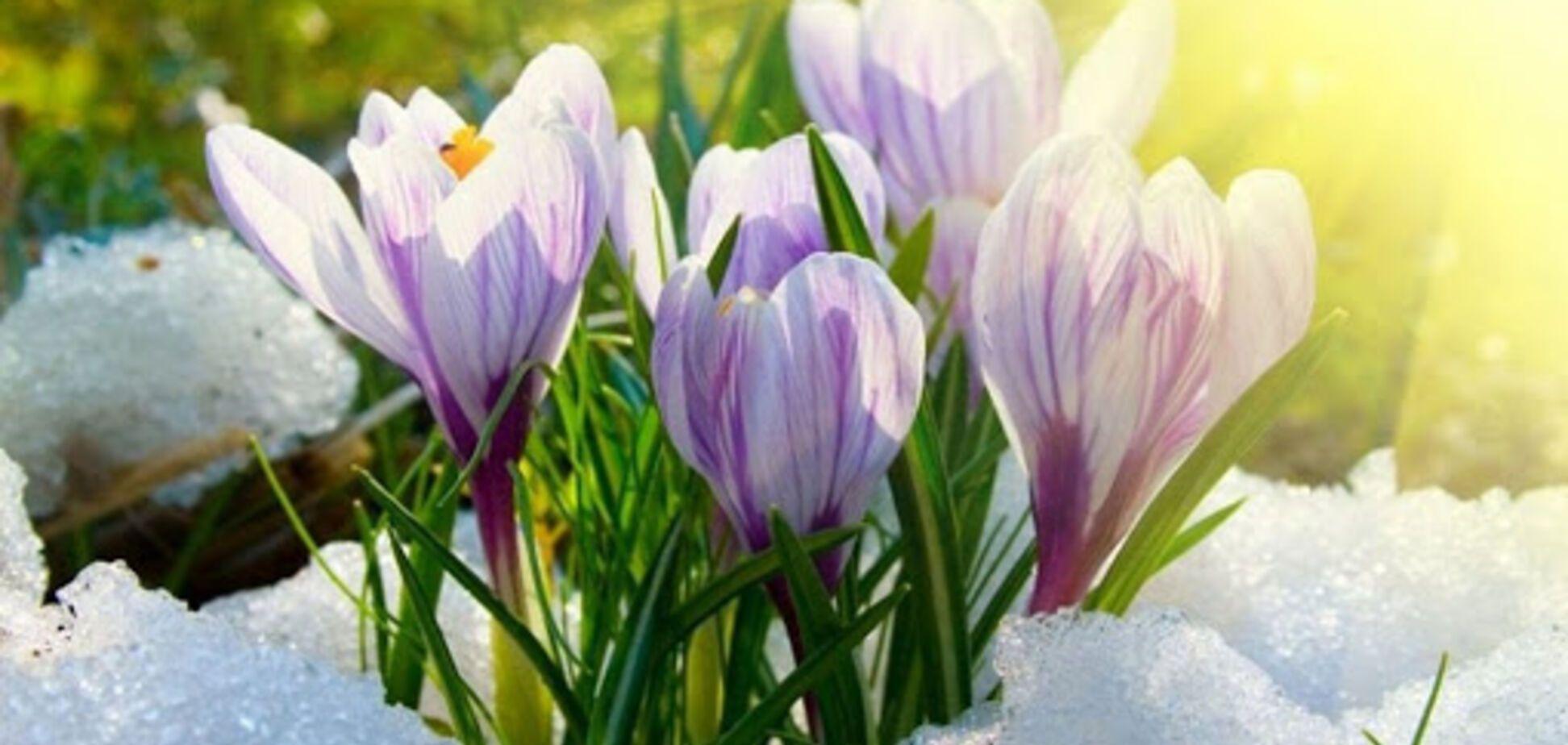 Прогноз погоды на весну-2020 в Украине рассорил синоптиков