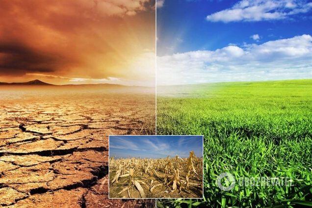 До 2100 года Европа может превратиться в пустыню – синоптики