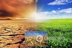 Европа может стать пустыней? Синоптики дали устрашающий прогноз до 2100 года