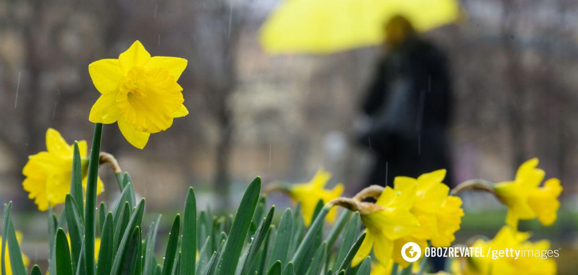 Гороскоп на сегодня, 15 марта: Стрельцы, Овны и Львы заряжают оптимизмом