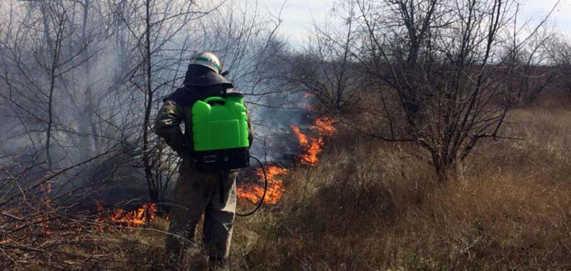 Весеннее обострение: в Днепре сжигают мусор и отравляют горожан
