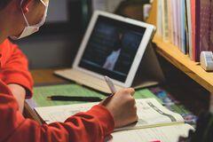 Как правильно организовать дистанционное обучение для школьников: эксперт дал советы