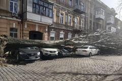 На Одессу надвигается шквальный ветер