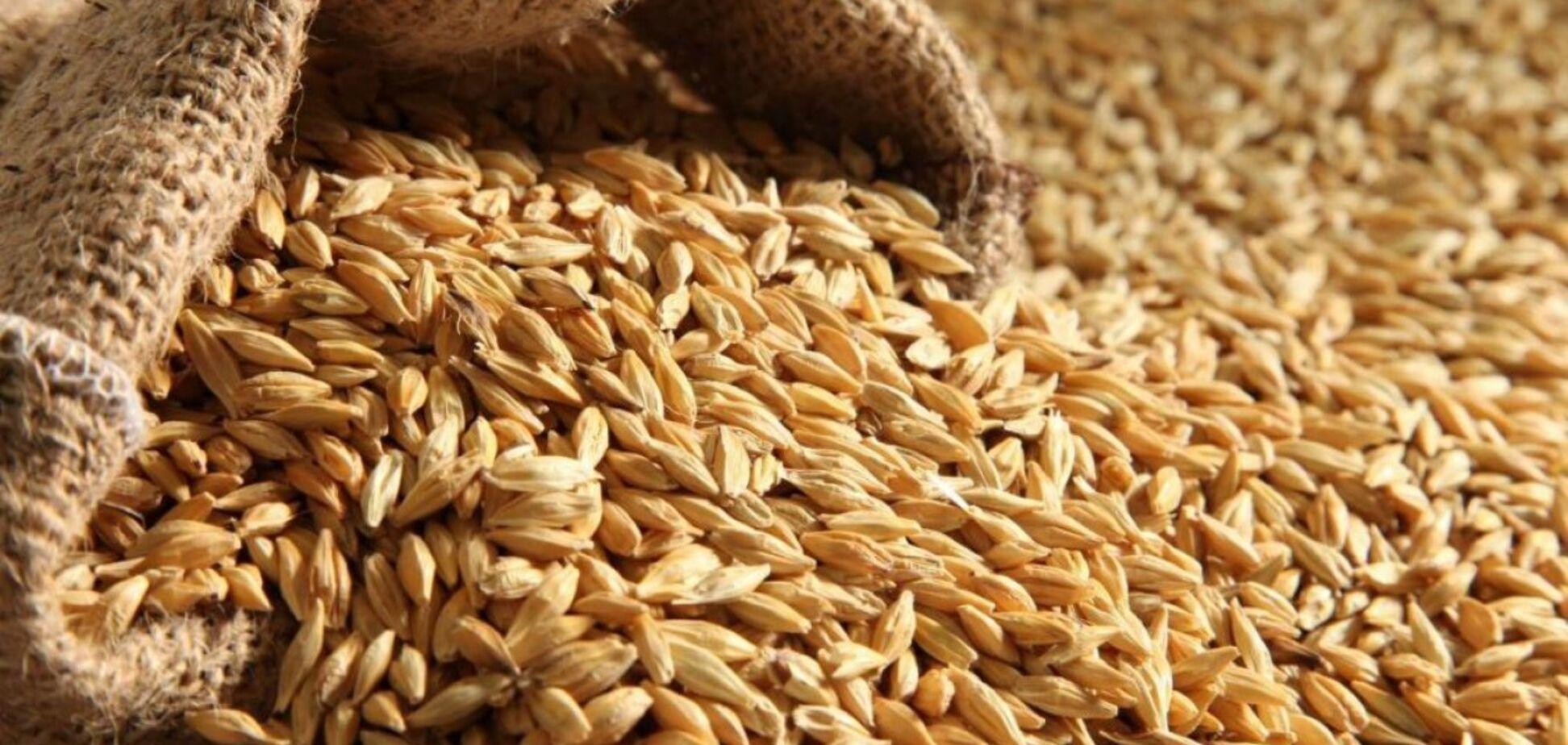 Вивезти все: як Милованов дохазяйнувався на ринку зерна