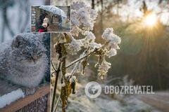 В Украине ударит мороз: синоптики предупредили о резком ухудшении погоды