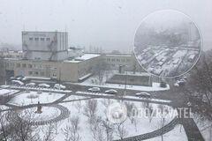 Киев среди марта неожиданно завалило снегом. Удивительные фото