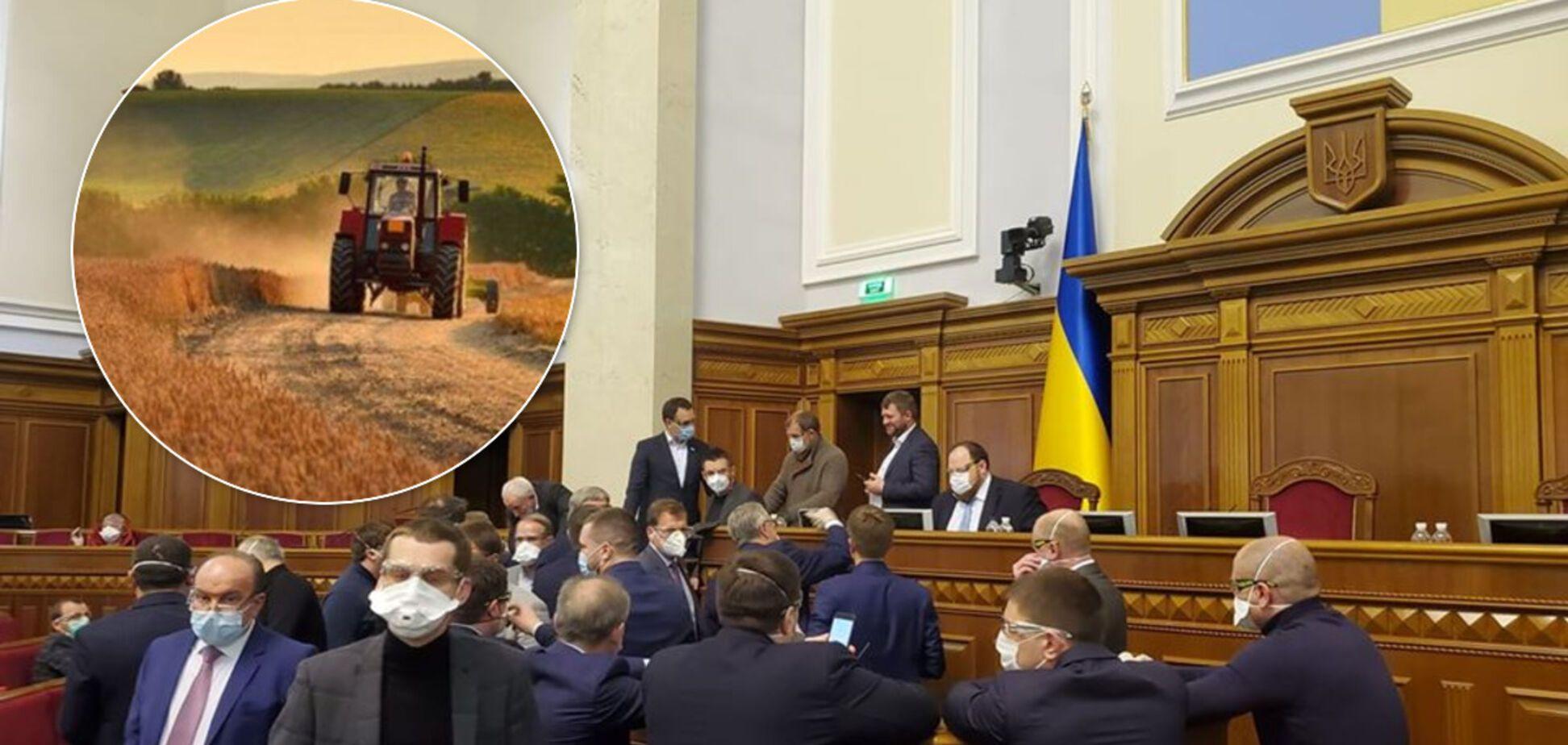 В Україні запустили ринок землі: Рада ухвалила сенсаційне рішення та нові правила
