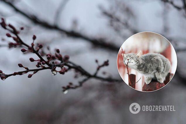 В Україні квітень розпочнеться з холоду