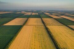 Не вірте фейкам: Порошенко пояснив, чому ринок землі не означає 'тотальний розпродаж'