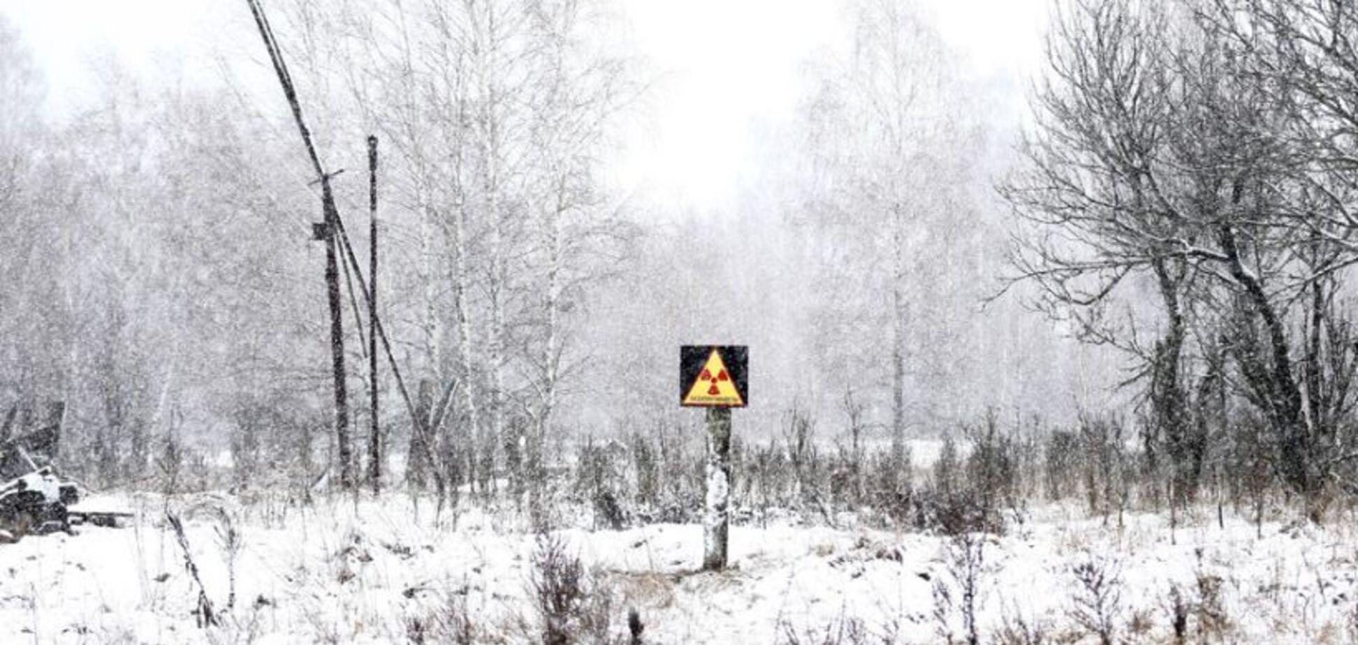 Уряд України вирішив добувати 'зелену' енергію на території Чорнобиля