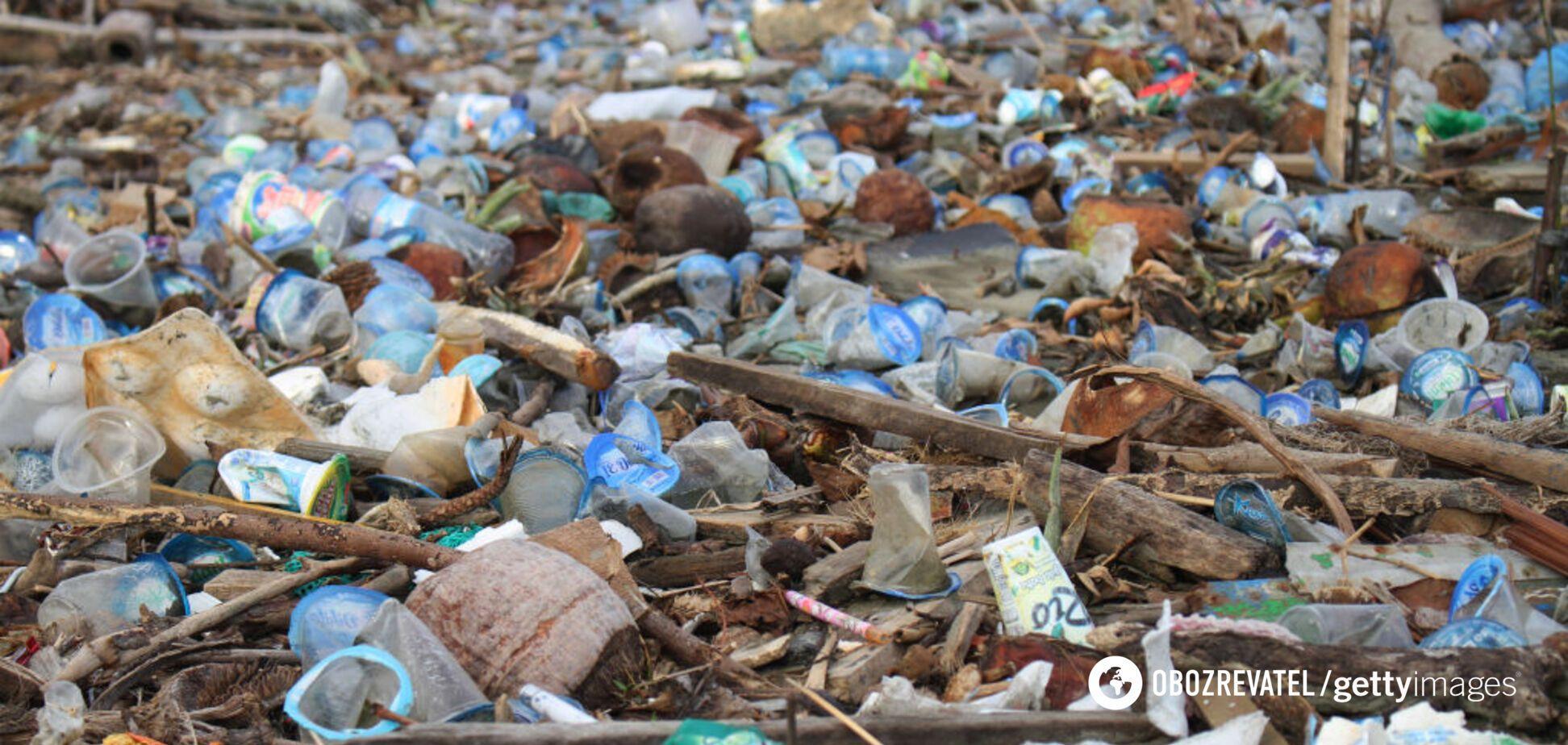 Поток мусора из Украины стал причиной 'перекрытия' Тисы в Венгрии: появилось видео