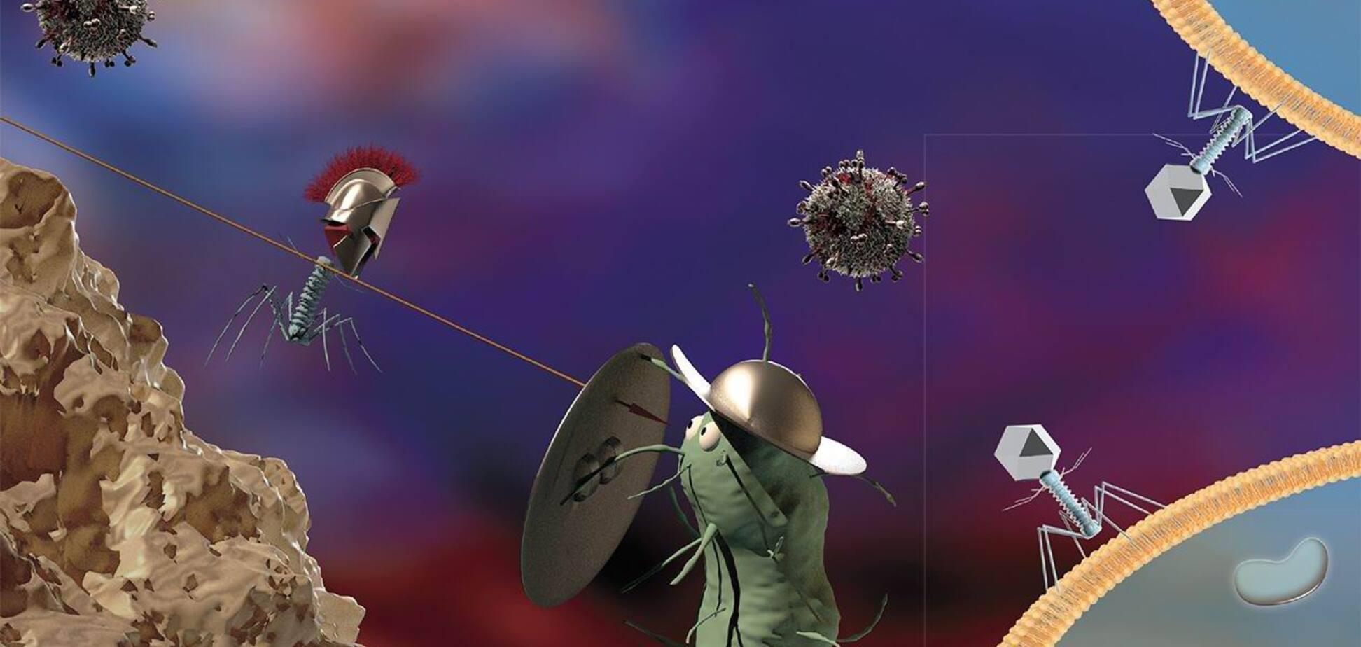 Таємне життя вірусів - як уникнути зараження?