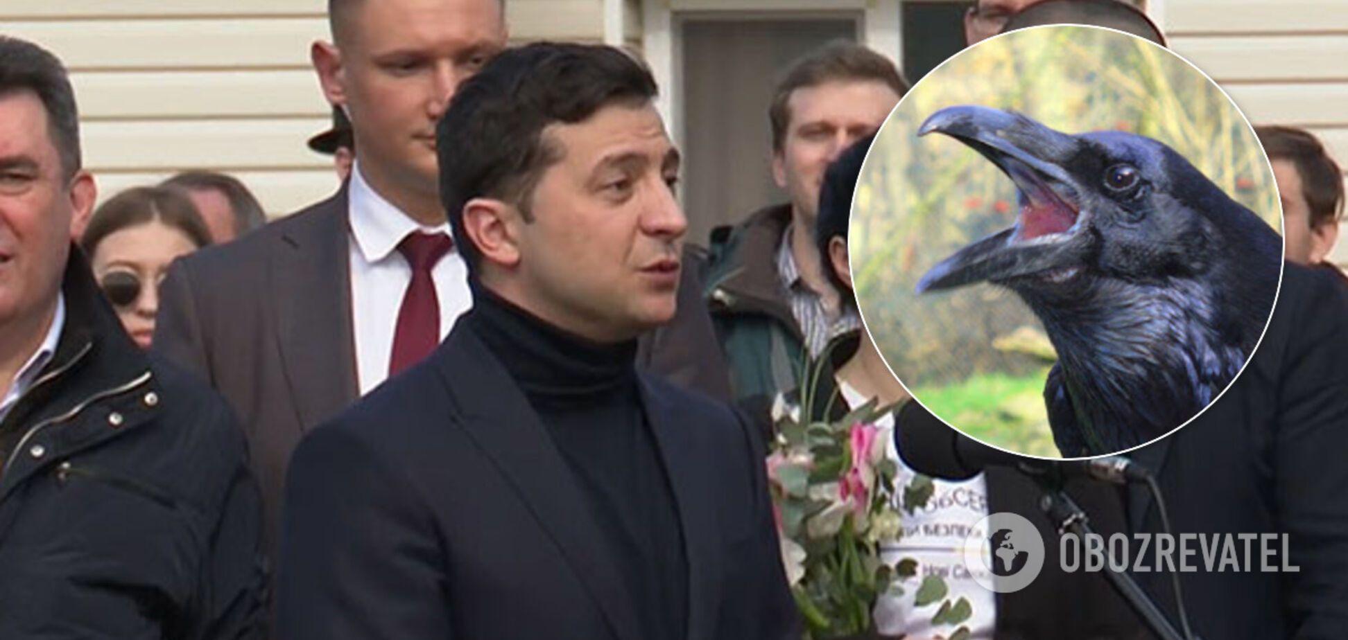 Зеленский получил 'добро' от ворон на туризм в Украине. Видео