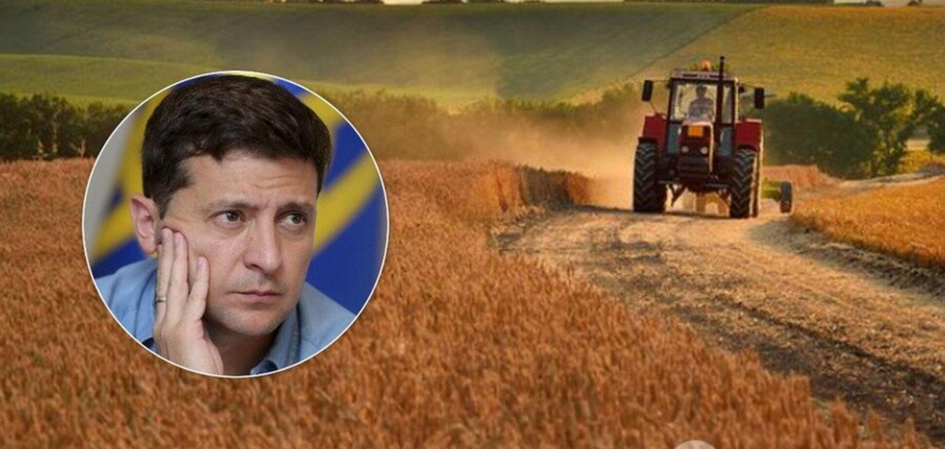 Зеленський назвав терміни запуску ринку землі: чого чекати українцям