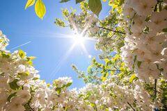 Погода в травні буде аномально спекотною