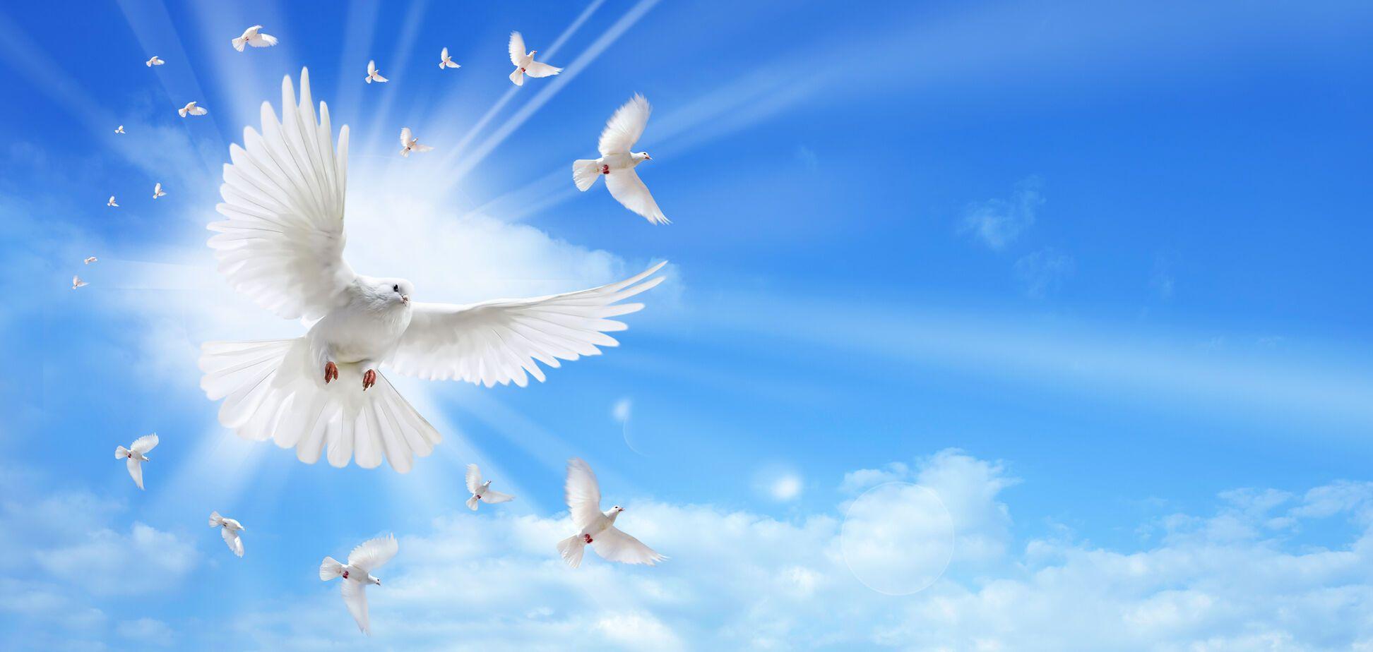С Благовещением! Красивые поздравления, открытки и видео