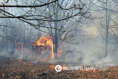 Повітря від пожеж у Чорнобилі йде на Київ: NASA опублікувало фото катастрофи з космосу