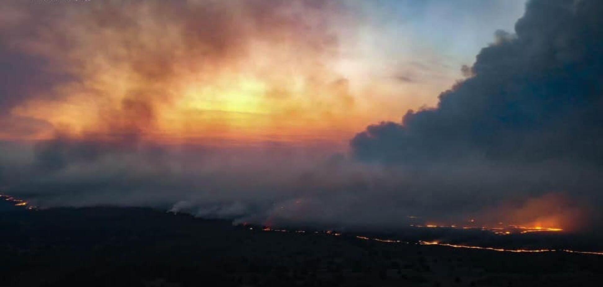 Эколог назвала худшие сценарии пожара в Чернобыле. Видео