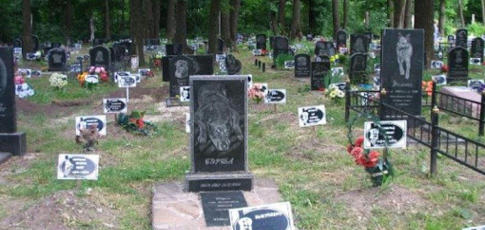 В Днепре возле могилы животного нашли мертвую женщину. Фото 18+