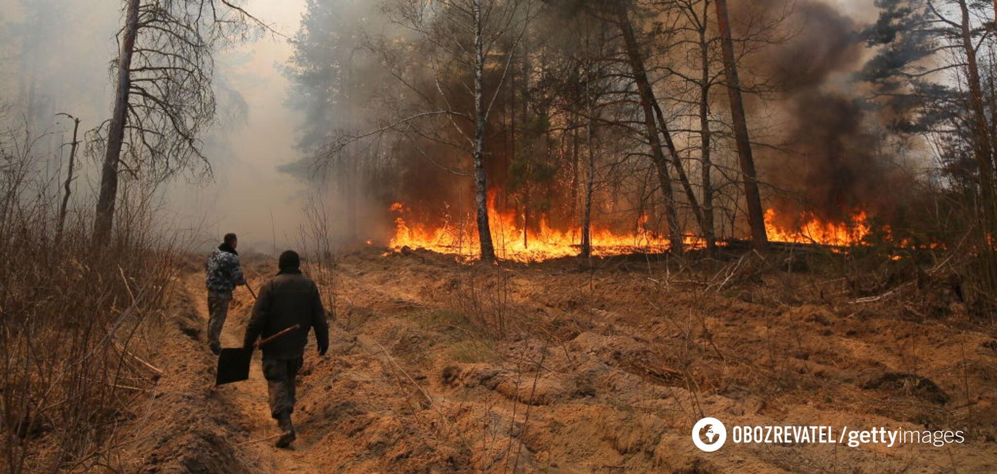 Зеленский отчитался о тушении пожаров в Чернобыле. Видео