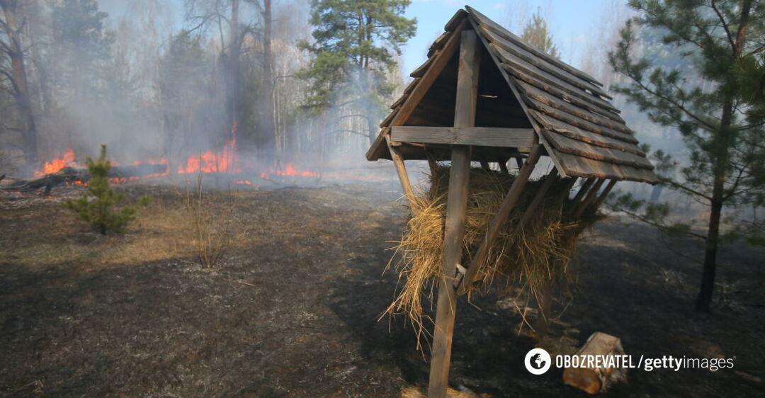 Пожежа в Чорнобильській зоні може стати міжнаціональною – еколог