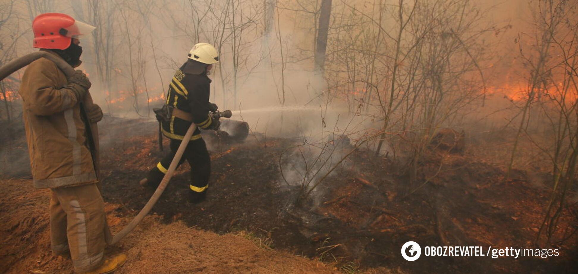 Природа допомогла: Геращенко повідомив про ліквідацію пожежі в Чорнобилі. Фото і відео