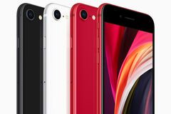 Apple представила бюджетний iPhone SE. Фото та відео