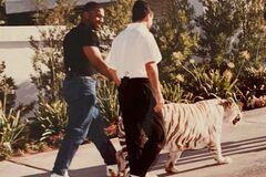'Довелося змінити білизну': Майк Тайсон кинув тренера в клітку з тигром