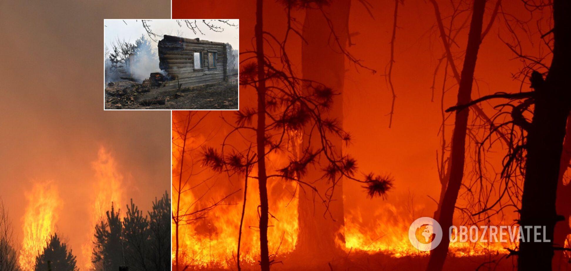 На Житомирщине вспыхнул масштабный пожар. Жуткие фото и видео