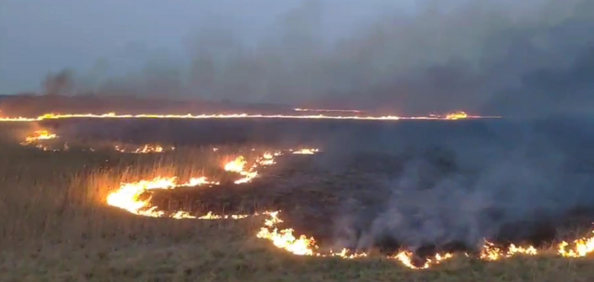 У Полтавській області загорілося поле