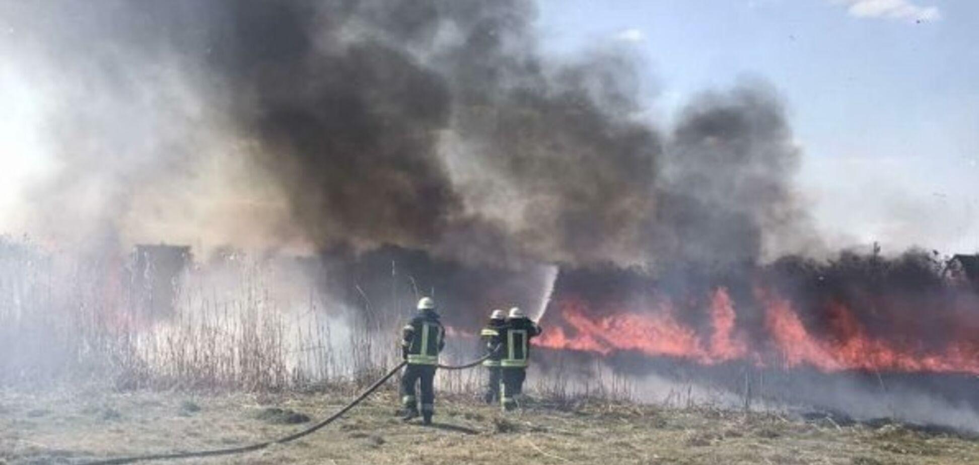 Полиция разыскивает виновников пожаров в Киевской области