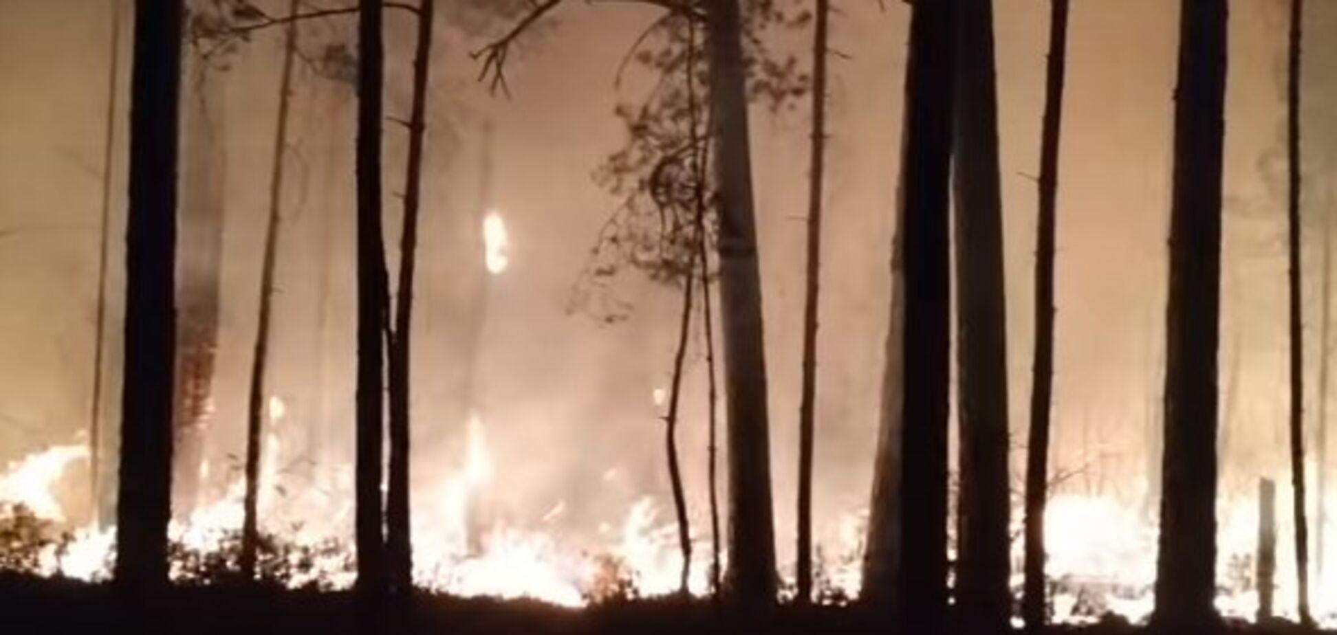 Аваков показав карту лісових пожеж на Київщині та Житомирщині. Відео
