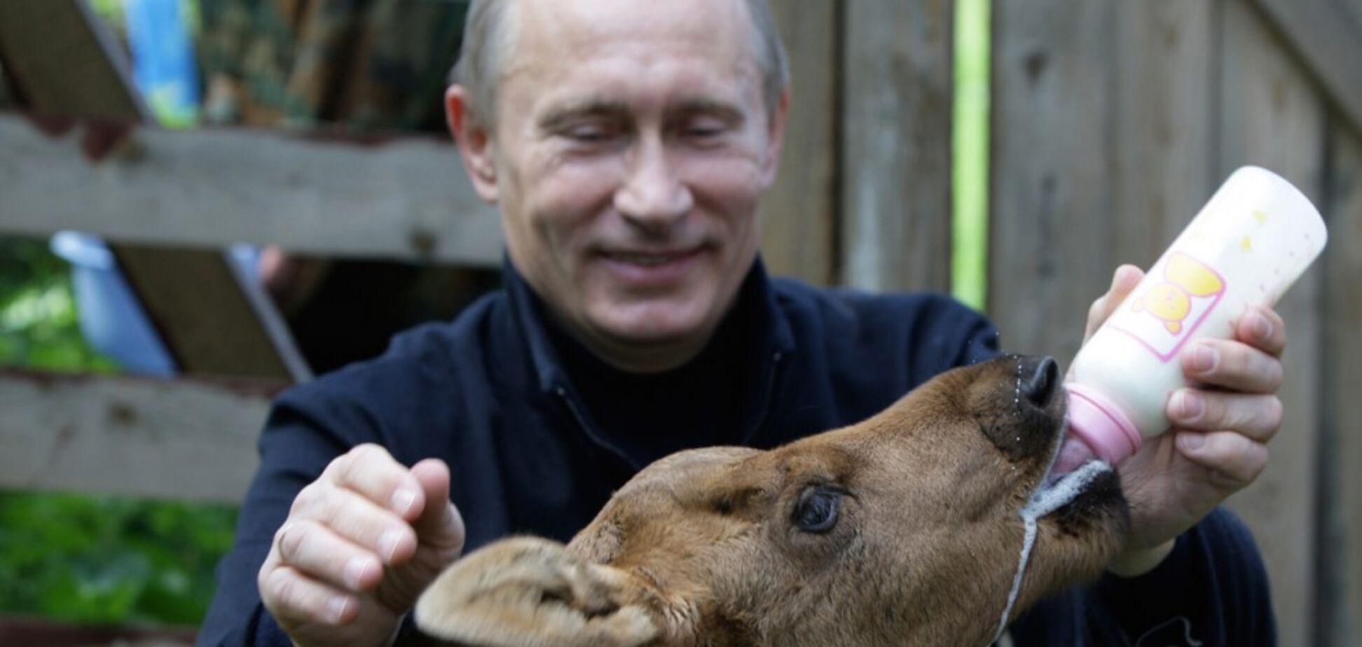 Ишаки Сталина-Путина