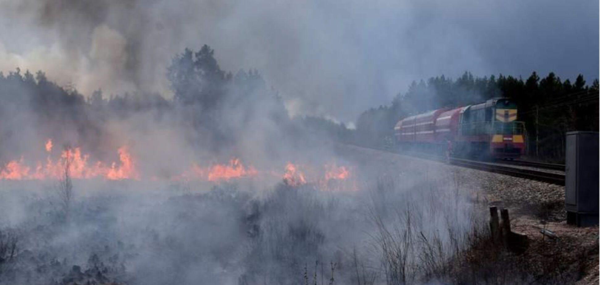З'явилися нові фото і відео боротьби з пожежами на Київщині та Житомирщині
